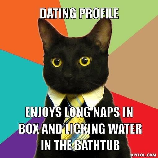 cat - online dating