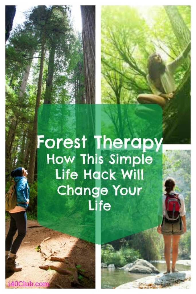 Forest Therapy: How This Japanese Life Hack Will Improve Your Health