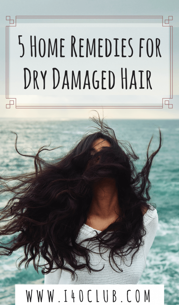 5 Home Remedies for Dry Damaged Hair